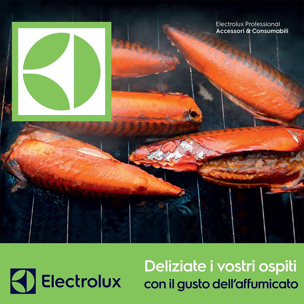 Valdostana Grandi Cucine partner tecnico ufficiale Electrolux - assistenza Electrolux 26